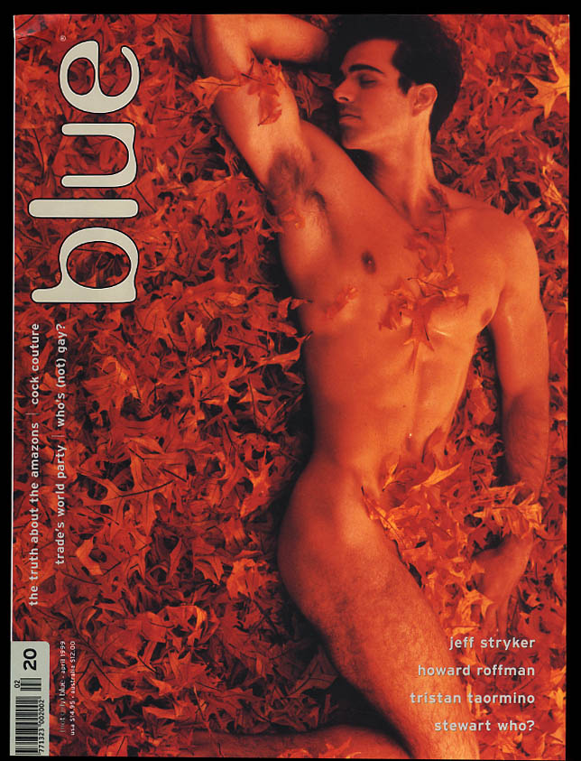 Image for NOT ONLY BLUE Gay male erotica #20 4 1999 Jeff Stryker Roffman Taormino +