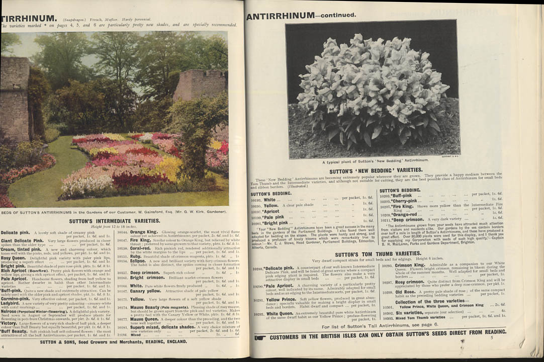 Image for Sutton & Sons Royal Seed Catalog 1927  flowers vegetables fruit trees