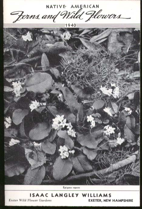 Image for Isaac Langley Williams Native American Fern & Wild Flower Catalog 1940