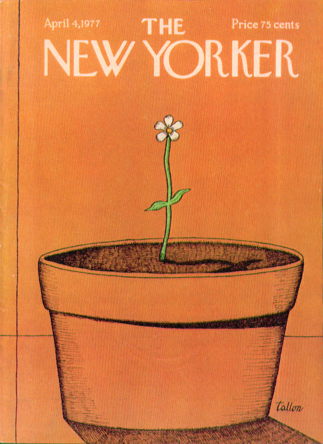 Image for New Yorker cover Tallon tiny sprout huge pot 4/4 1977