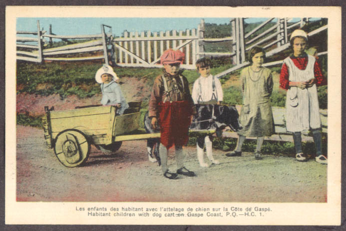 Image for One-dog cart Habitant children Gaspe Coast PQ postcard 1930s