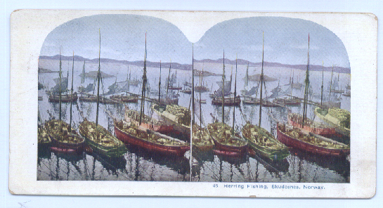 Image for Herring Fishing Norway color stereoview 189?