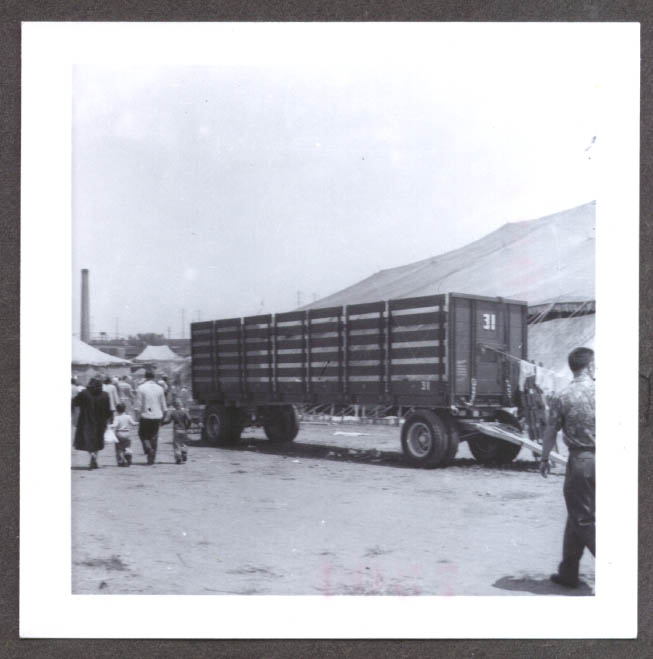 Image for Livestock Wagon #31 Ringling Bros circus photo 1955